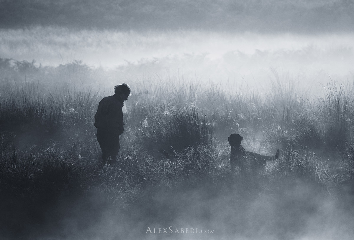One man and his dog print by Alex Saberi