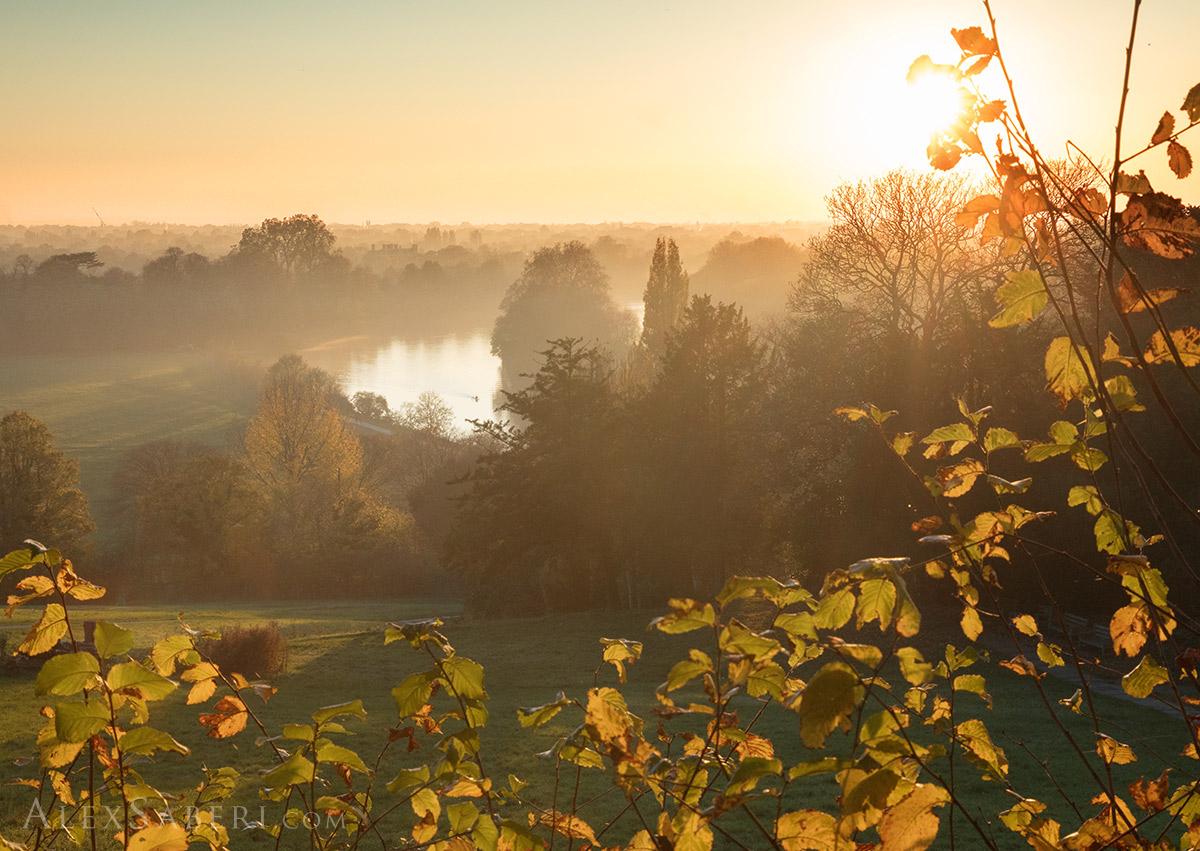 Richmond hill Autumn Leaves Sunset