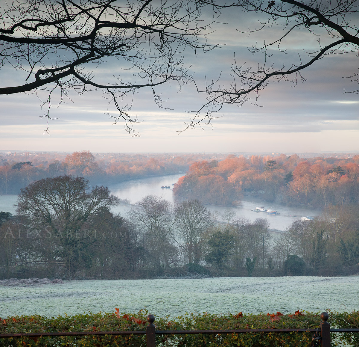 Richmond park winter sunrise photo print
