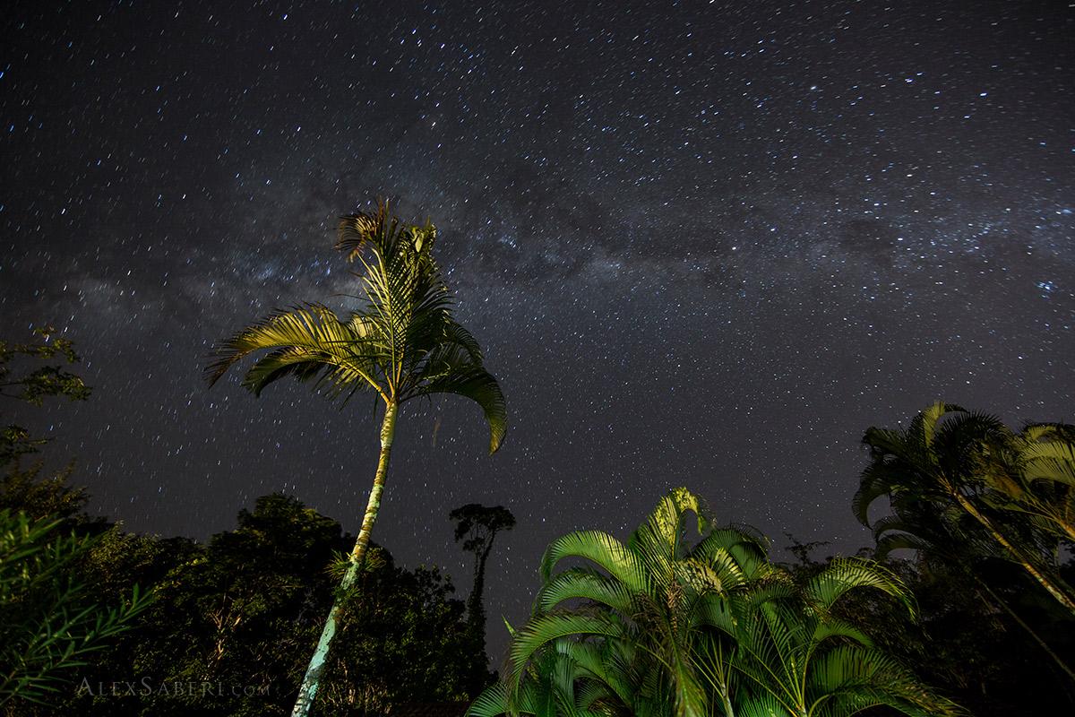 Ubatuba nights
